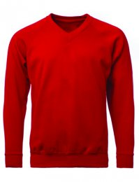 SV6: V Neck Sweatshirt