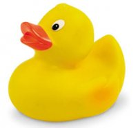 PL011: Squeaky Duck